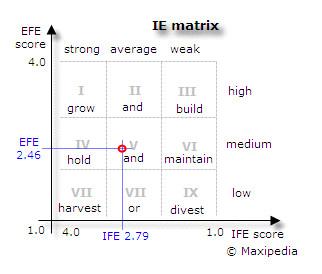 Ie Matrix Template Internal External Ie Matrix