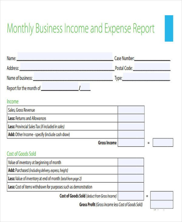 Income and Expense form 30 Expense Report Template In Pdf