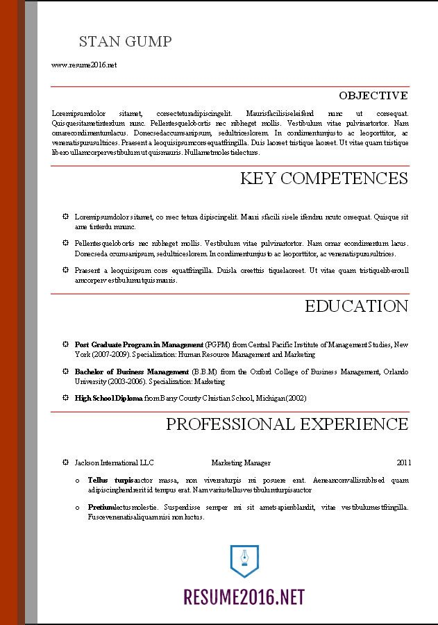 It Resume Template Word Word Resume Templates 2016