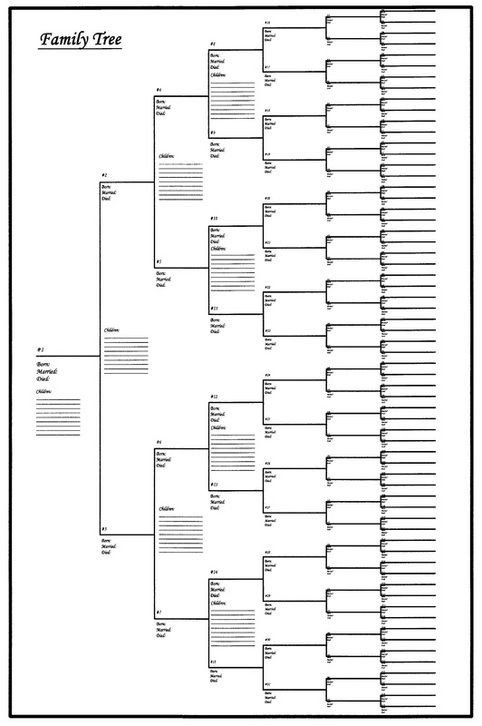 Large Family Tree Templates 22 Best Geneology Images On Pinterest