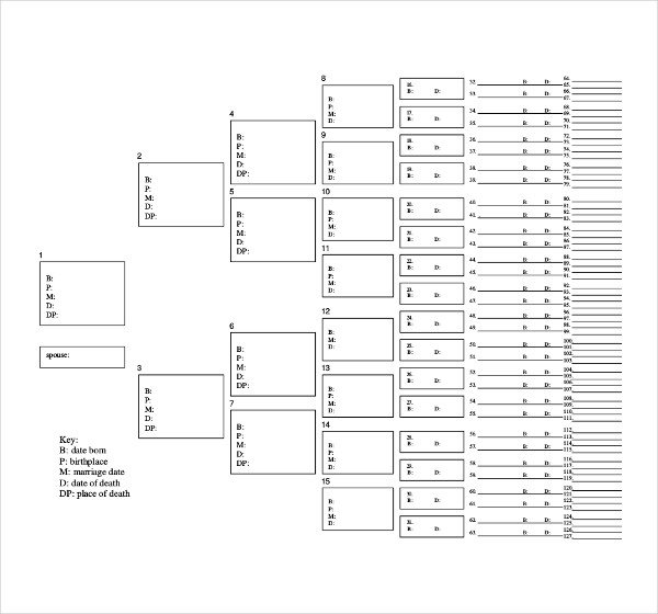 Large Family Tree Templates 51 Family Tree Templates Free Sample Example format