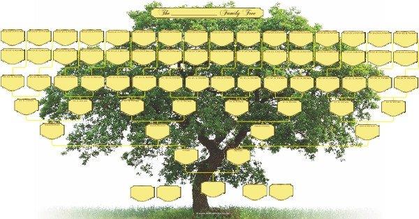 Large Family Tree Templates Blank Family Tree Charts