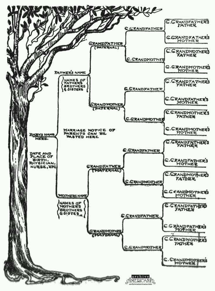 Large Family Tree Templates Start A Genealogical Record for Your Family 1905