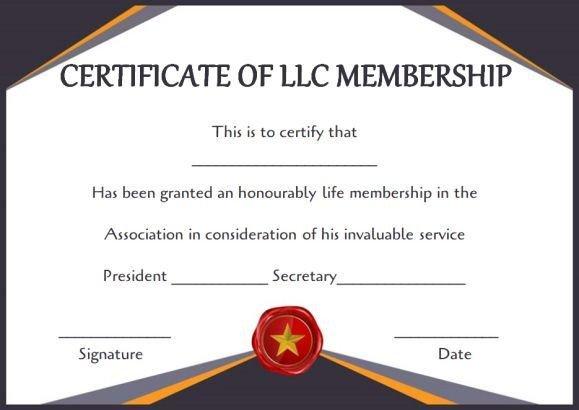 Llc Membership Certificate Template Best 25 Free Certificate Templates Ideas On Pinterest
