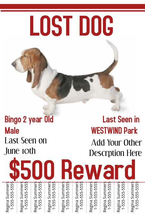 Lost Dog Flyer Template Lost Dog Template