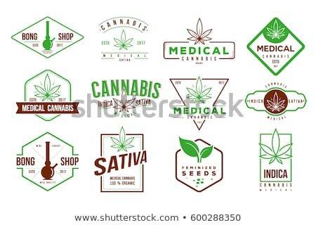 Medical Marijuana Label Template Absemetov S Portfolio On Shutterstock
