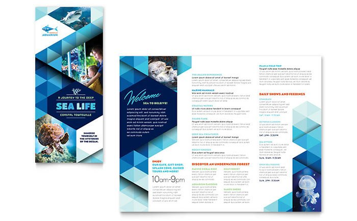 Microsoft Publisher Booklet Templates Ocean Aquarium Brochure Template Word & Publisher