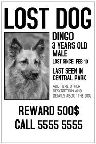 Missing Dog Flyer Template 1 240 Customizable Design Templates for Lost Animal