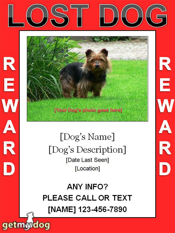Missing Dog Flyer Template 11 Psd Lost Dog Flyer Templates