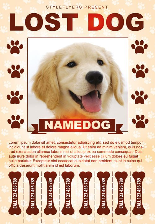 Missing Dog Flyer Template Lost Dog Free Flyer Template Download for Shop