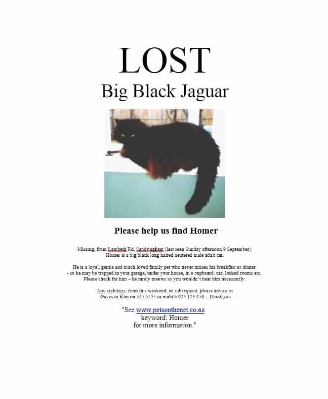Missing Pet Poster Template 40 Lost Pet Flyers [missing Cat Dog Poster] Template