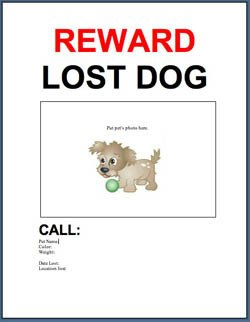 Missing Pet Poster Template Adopt A Pet Blog Free Template Lost or Found Pet
