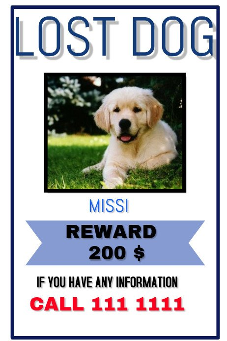 Missing Pet Poster Template Lost Pet Template