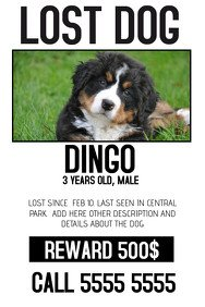 Missing Pet Poster Template Make Missing Pet Flyers In Minutes