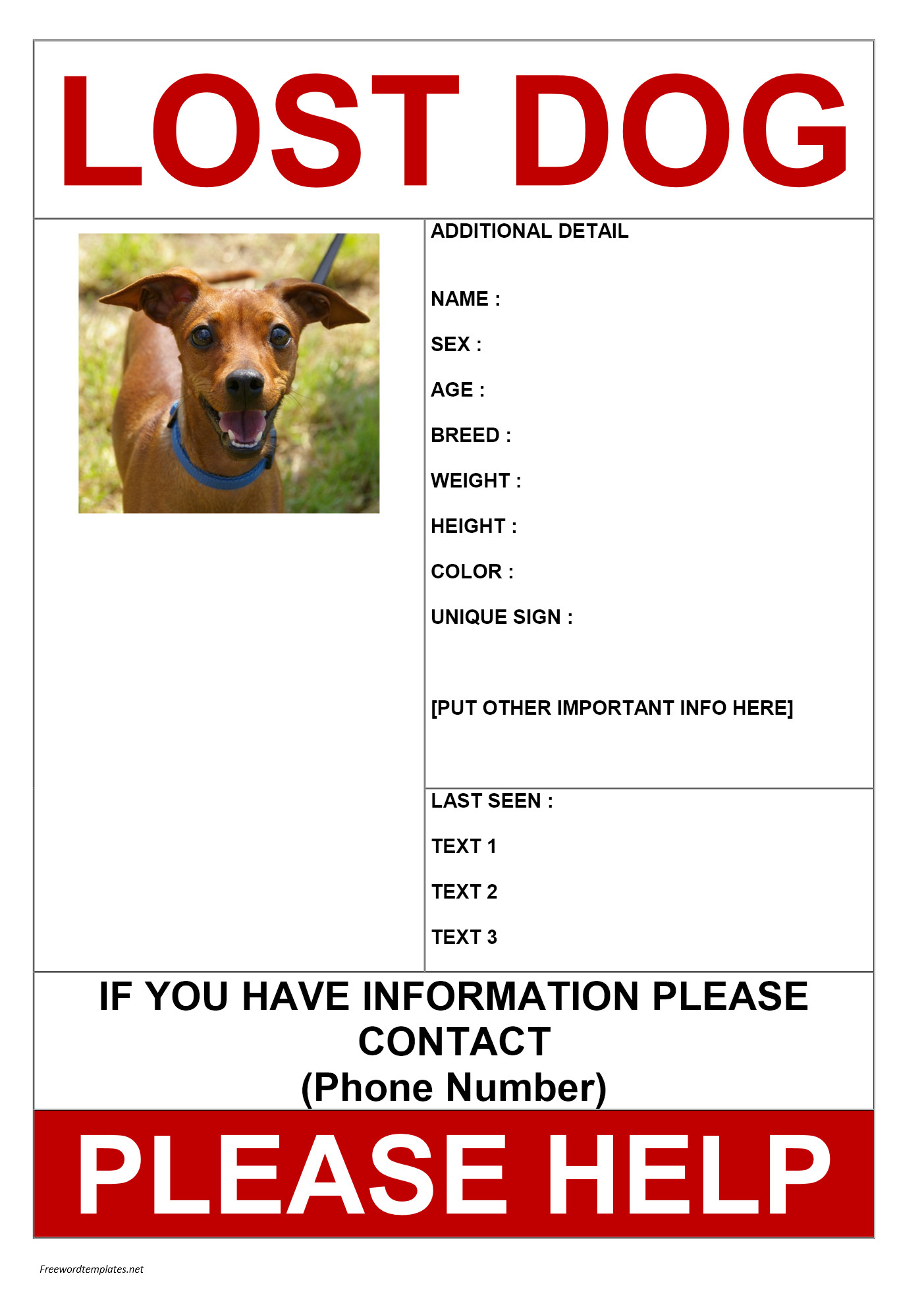 Missing Pet Poster Template Missing Dog Poster