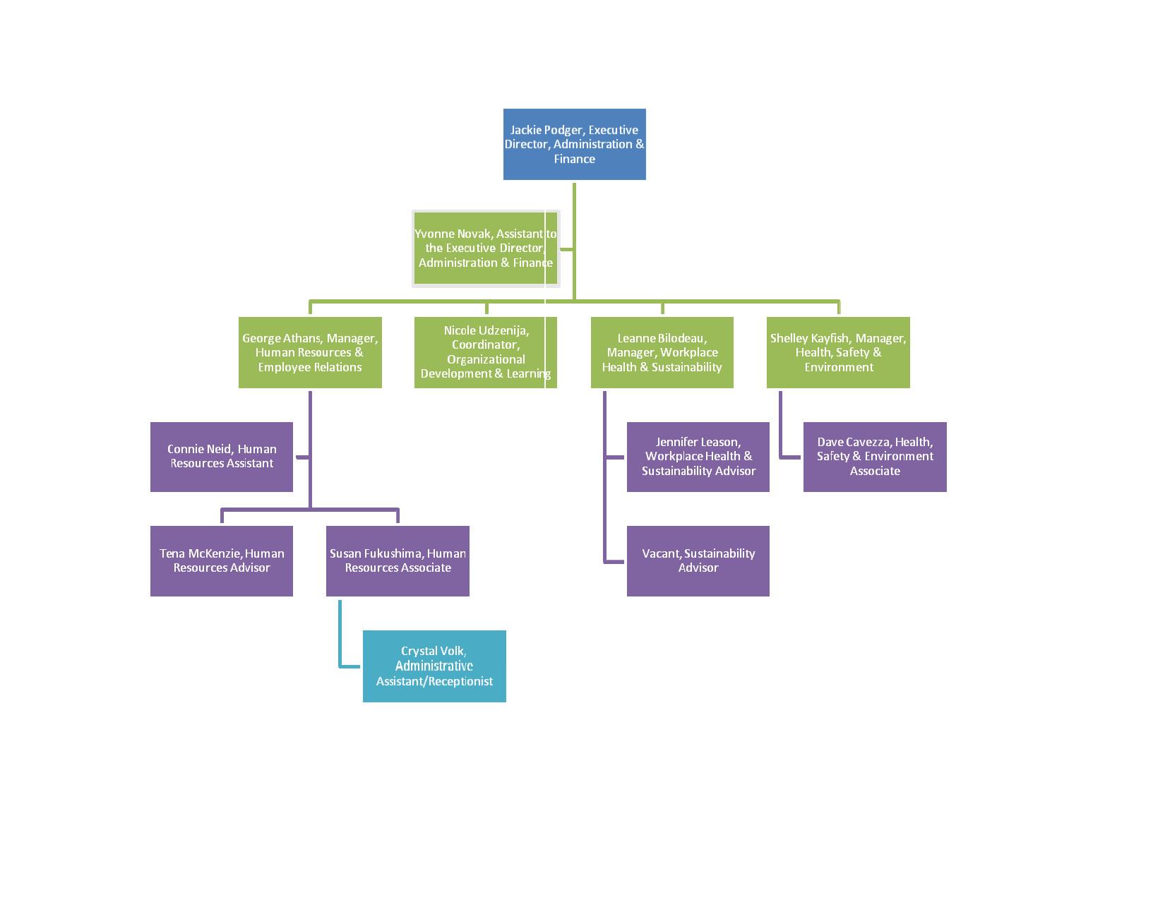 Ms Word org Chart Templates organizational Chart Template Word