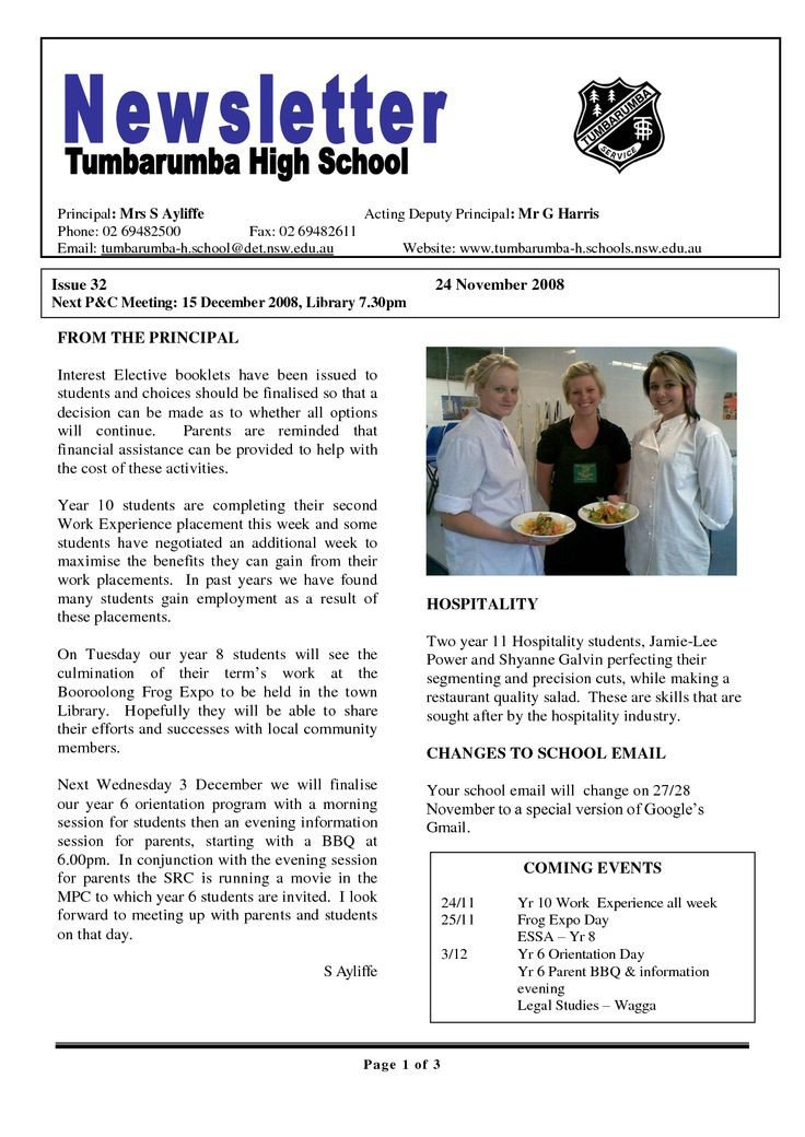 Newsletter Sample for School 17 Awesome High School Newsletter Templates Images