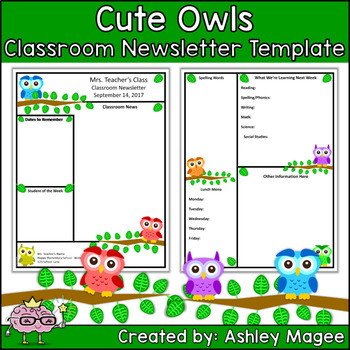 Newsletter Templates for Teachers Teacher Newsletter Template Primary Owls theme by Mrs
