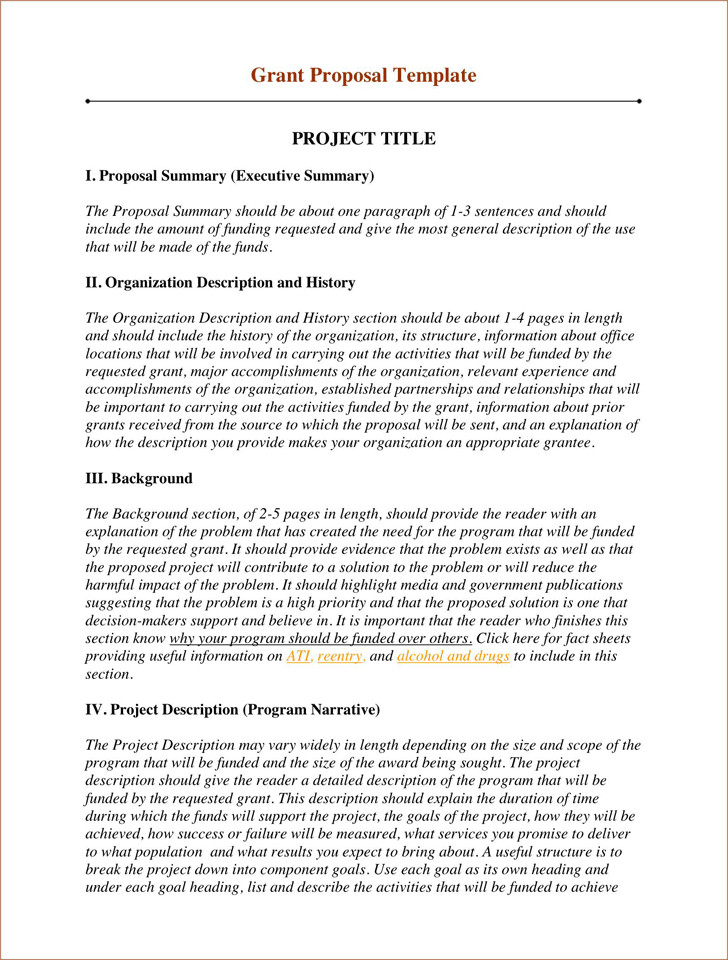 Non Profit Proposal Template Grant Proposal Template 2