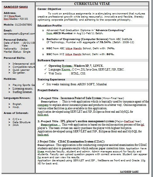 One Page Resume Template E Page Resume format In Doc