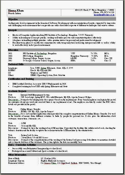 One Page Resume Template E Page Resume format
