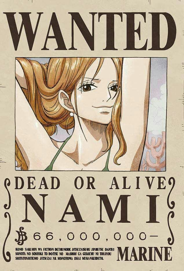 One Piece Wanted Posters 25 Best Ideas About E Piece Nami On Pinterest