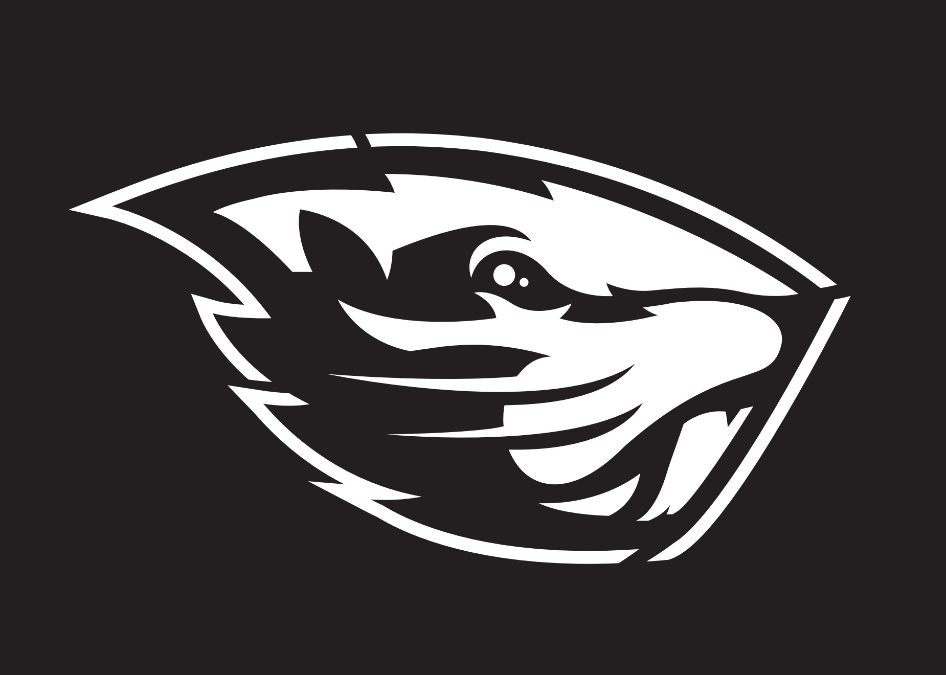 Oregon Ducks Pumpkin Stencil Beavers Pumpkin Stencils Osubeavers