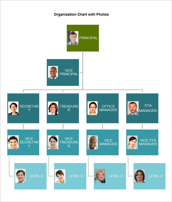 Organizational Chart Template Word organizational Chart Template 19 Free Word Excel Pdf