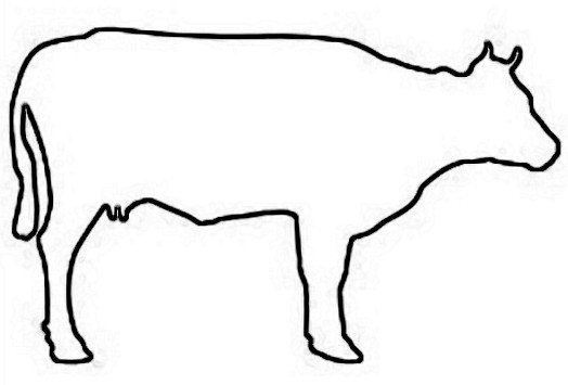 Outline Of A Cow Cow Outline Cliparts