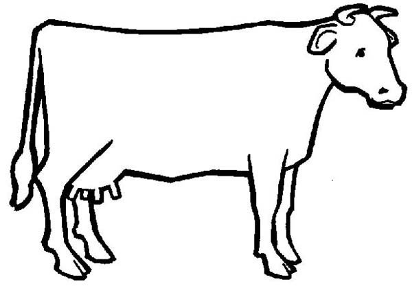 Outline Of A Cow Free Outline A Cow Download Free Clip Art Free Clip