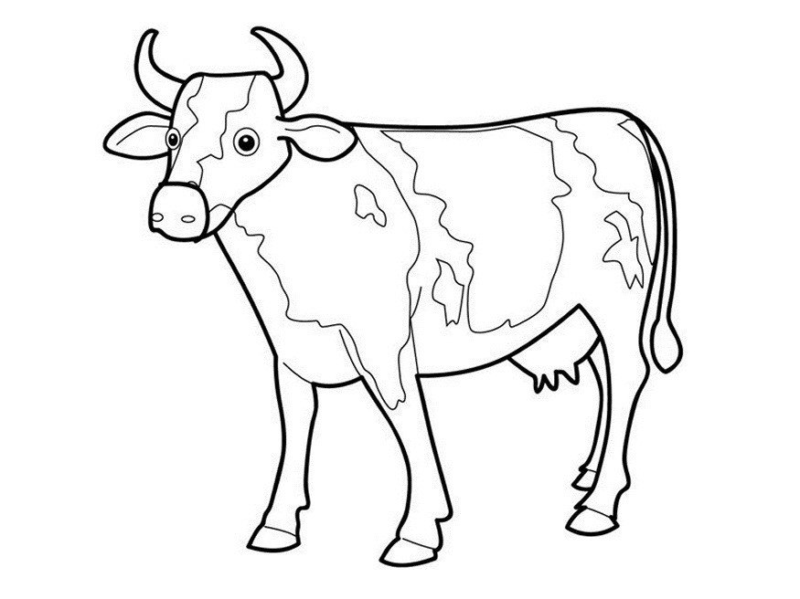 Outline Of A Cow Free Outline Cow Download Free Clip Art Free Clip Art