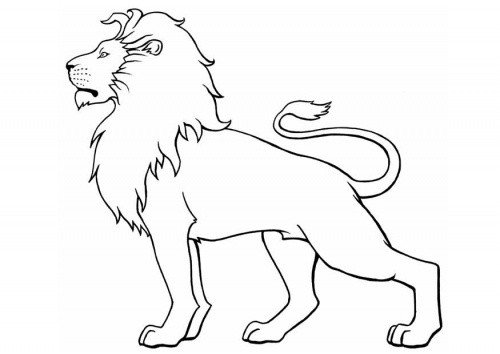 Outline Of A Lion 25 Best Ideas About Simple Lion Tattoo On Pinterest