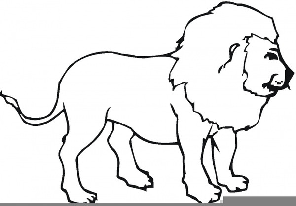 Outline Of A Lion Lion Clipart Outline