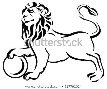 Outline Of A Lion Proud Lion Stock Vector Shutterstock