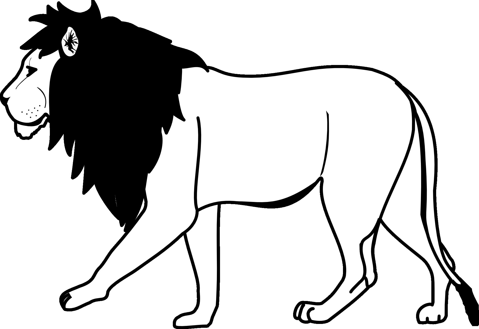 Outline Of A Lion White Lion Clipart Lion Outline Pencil and In Color