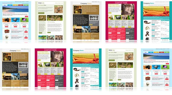 Outlook Email Newsletter Template Download Free Email Templates