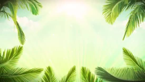 Palm Sunday Powerpoint Template Free Palm Sunday Background Loop Hyper Media