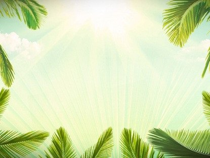 Palm Sunday Powerpoint Template Free Palm Sunday Background Loop