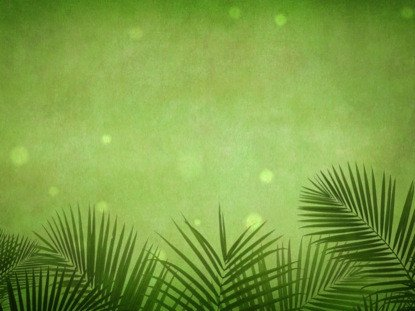 Palm Sunday Powerpoint Template Free Palm Sunday Grunge Green Motion Worship