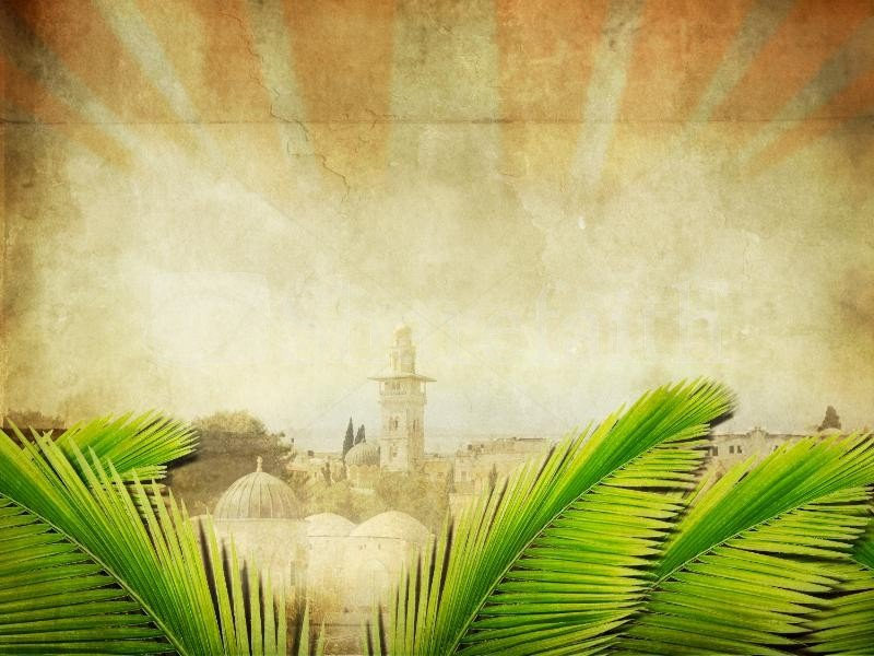 Palm Sunday Powerpoint Template Free Palm Sunday Wallpaper Background Wallpapersafari
