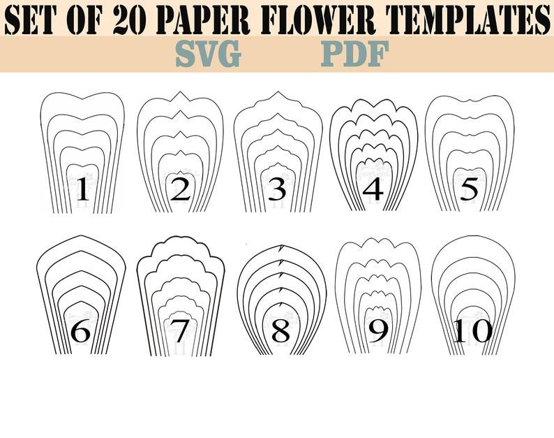Paper Flower Template Free Bundle 1 All 20 Pdf & Svg Paper Flower Template Giant