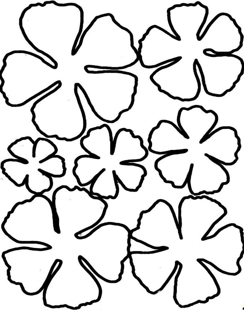 Paper Flower Template Printable Printable Flower Petal Template Clipart Best