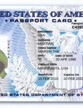Passport Photo Template Psd Drivers License Fake Drivers License Drivers License