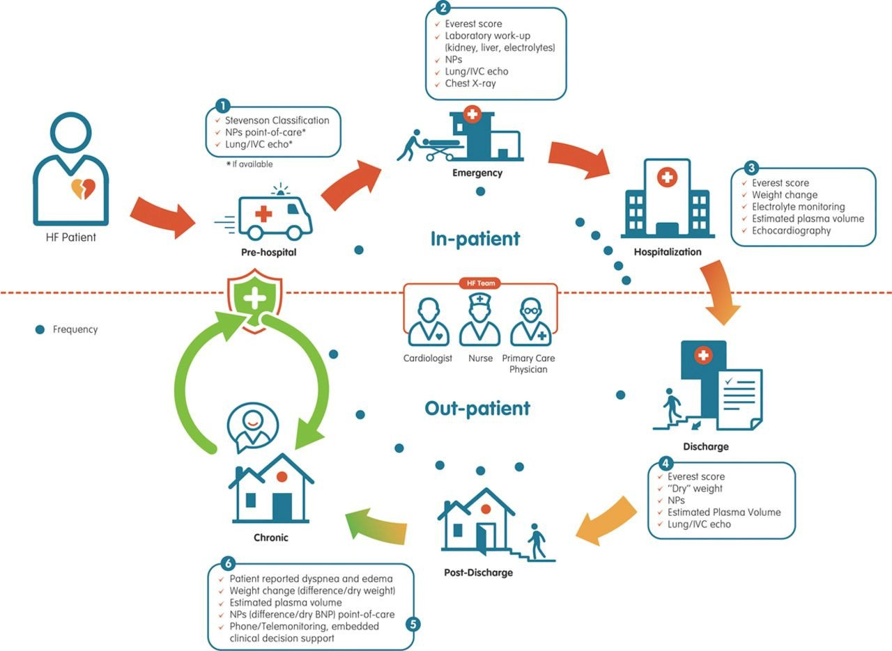 Patient Journey Mapping Template Integrative assessment Of Congestion In Heart Failure