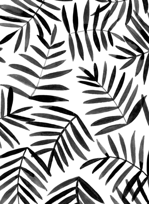 Patterns Black and White Black Palm