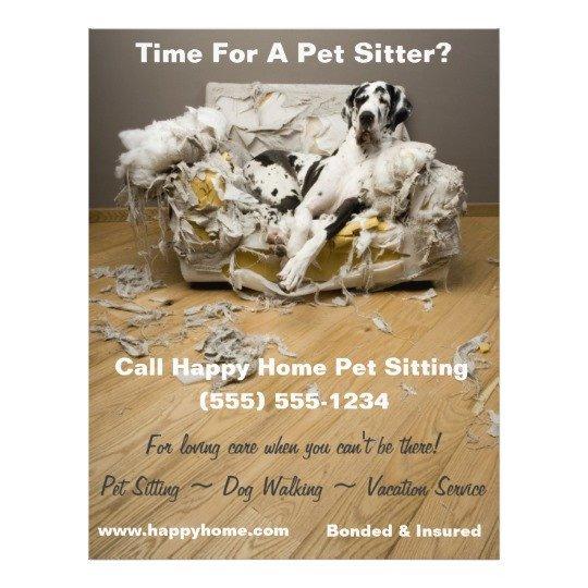 Pet Sitting Flyer Template Great Dane Pet Sitting Flyer