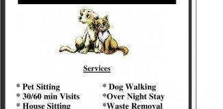 Pet Sitting Flyer Template Marketing Af Templates