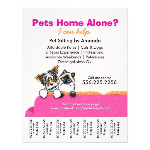 Pet Sitting Flyer Template Pet Sitter Ad Yorkie Cat Couch Pink Tear Sheet Flyers