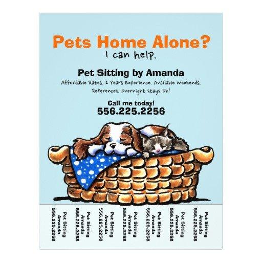 Pet Sitting Flyer Template Pet Sitter Sitting Personalized Tear Sheet Custom Flyer