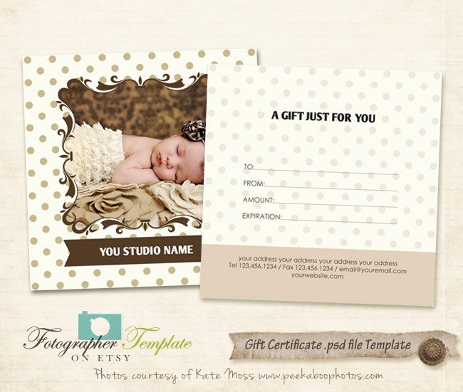 Photography Gift Certificate Template Gift Certificate Card Template by Graphertemplate